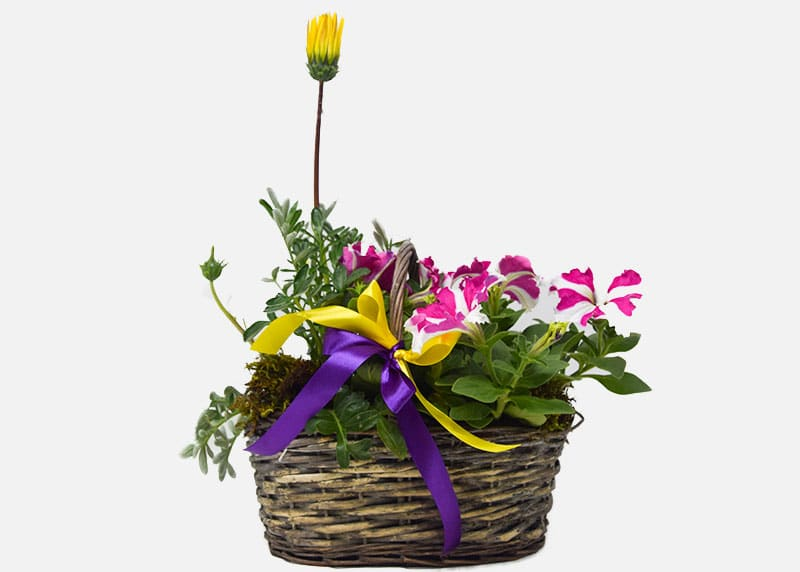 Hope and Joy Spring Flower Basket