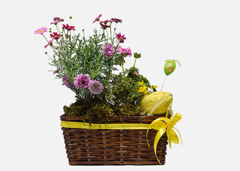 Spring Fields Easter Flower Basket